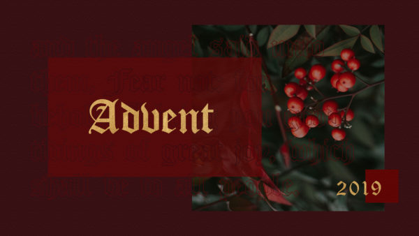 Advent 2019 - Week 3 Image